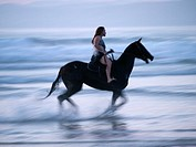 Horseback rider on the beach in Morro Bay, California, United States