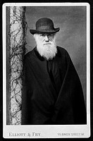 Charles Robert Darwin 1809_1882, British naturalist. Darwin is most famous for his theory of evolution, published in 1859 in ´On the Origin of Species...