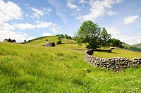 Cottages in farmland with stone wall, Meadows near Muker, Yorkshire-Dales region in North-England, Great Britain, Europe