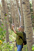 Hispanic woman hiking in forest taking photographs