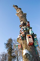 tree with color nesting_boxes