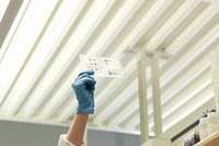 Laboratory technician examines DNA sequence