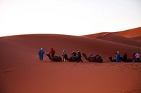 Sahara desert at dawn, Morocco