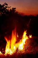 Bushfire at dusk, Litchfield National Park, Northern Territory, Australia