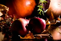 Autumn Still_life