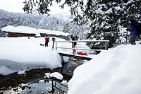 Snowshoeing with dogs, Laengental, Lenggries, Upper Bavaria, Germany