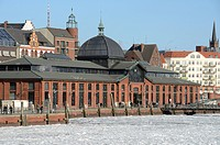 Old fish market hall in the Port of Hamburg, Hamburg, Germany, Europe