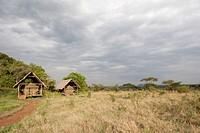 Ikoma Wild Camp, covered tents in the vast savannah, Serengeti National Park, Tanzania, East Africa, Africa