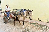 Cuban man with horse and cart, Trinidad, Cuba, Greater Antilles, Caribbean, Central America, America