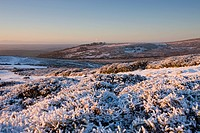 Snow covered moor in winter, Dartmoor National Park, Devon, England, United Kingdom, Europe