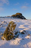 Haytor Rocks on a snowy winter morning, Dartmoor National Park, Devon, England, United Kingdom, Europe