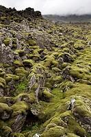 Benserkjahraun lava field, Snaefellsjokull National Park, Snaefellnes, Iceland