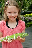 Girl and endangered Fiji crested iguana Brachylophus vitiensis, Kula Eco Park, Coral Coast, Viti Levu, Fiji, South Pacific