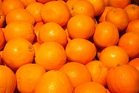 A Pile Of Oranges, Waterloo Quebec Canada