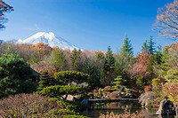 view of mount fuji from a garden, japan