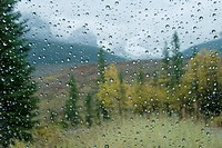 raindrops on a car window, alberta canada