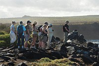 a group of people walking on rugged terrain, punta suarez galapagos equador