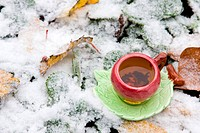 A cup of tea on a background of snow_covered leaves
