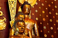 Golden Buddha Images of Northern Thailand.