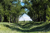 An old channel of the Missouri River creates a charming pathway, Cross Ranch State Park, North Dakota.