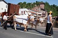 France, Pyrenees Atlantiques, Saint Jean Pied de Port, festival of the basque wedding 1900