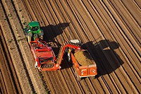 France, Eure, Villers, harvesting potatoes aerial view