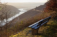 bench with view over Moselle and vineyards, near Schweich, Rhineland-Palatinate, Germany