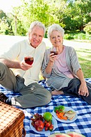 Man and a woman smiling while holding glasses of wine during a picnic