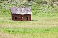 Old Homestead, near Milner, Colorado