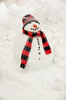 Snowman with red and black scarf and hat