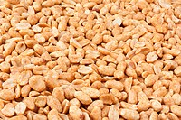 Background of roasted peanuts.