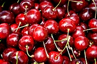 A bunch of ripe cherries ready to eat.