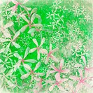 Fresh green flower textured art background with text space