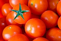 closeup of red tomato group