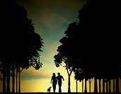 Editable vector illustration of a couple walking through a wood at dawn or dusk with sky made using a gradient mesh
