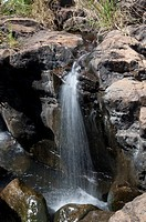 A old waterfall in tamilnadu India, known for its herbal remedy