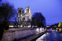 Notre Dame Lights in Paris, France