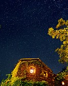 An ivy covered house under a star filled night sky