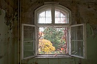 An open window in an abandoned building, Beelitz_Heilstaetten, Germany