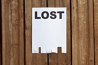 A flyer posted on a wooden fence with the word LOST on it (thumbnail)