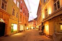 Street in Graz / Austria, by night.