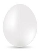 White egg on white background. Vector illustration
