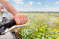 Senior couple riding bicycles on path through field of wildflowers