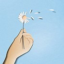 Papercut of hand holding daisy flower with petals removed