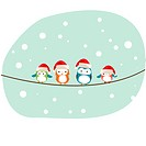 winter birds Christmas card vector
