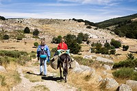 Mother and daughter walking with a donkey during a family_hike with a donkey in the Cevennes Mountains, France, Europe