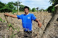 Smallholder standing in his destroyed corn field, maize field, that was destroyed in the floods of October 2011, 40% or the national corn crop was des...
