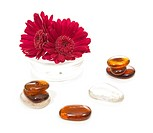 glass stones and gerber flower