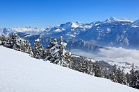 Alps, Alpine panorama, view, mountain, mountains, mountain, mountain panorama, Bern, Bernese Alps, Bernese Oberland, ice, cliff, mountains, summit, pe...