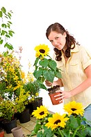 Smiling woman holding flower pot with sunflower on white background